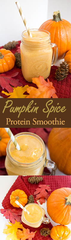 Fall is right around the corner which means pumpkin flavored everything! I've partnered up with Born Sweet™ Zing™ Zero Calorie Stevia Sweetener to bring you this delicious healthy recipe for a pumpkin spice protein smoothie. I know it sounds weird, but it's actually so creamy and yummy, you won't even know it's healthy for you! Now, let me just start by saying something that my shock some of you: I despise pumpkin spice lattes from Starbucks. Maybe it's because I worked there and got so tired of making them, but the bottom line is that I'm shockingly not a fan. Regardless, I was in the mood for a fall-themed recipe and am slightly obsessed with smoothies at the moment. I found this delicious sounding recipe on Pinterest here and decided to try it. The recipe is super simple - you just put a banana, almond milk, pumpkin puree, pumpkin spice, protein powder, and Zing Stevia into a blender. pumpkin spice protein smoothie recipepumpkin spice protein smoothie recipepumpkin spice protein smoothie recipepumpkin spice protein smoothie recipe Pumpkin Spice Protein Smoothie Serves: 1 | Time: 5 minutes This recipe is creamy, delicious, and healthy! Ingredients 1 cup almond milk (the original recipe calls for unsweetened, but I used vanilla) 1/2 cup pumpkin puree 1 packet of Zing™ Zero Calorie Stevia Sweetener (get a free sample here) 1 scoop vanilla protein powder 1/2 teaspoon pumpkin pie spice 1 banana 7 ice cubes Instructions Put all ingredients in blender and mix until creamy and smooth. Pour into a cup and enjoy! pumpkin spice protein smoothie recipe